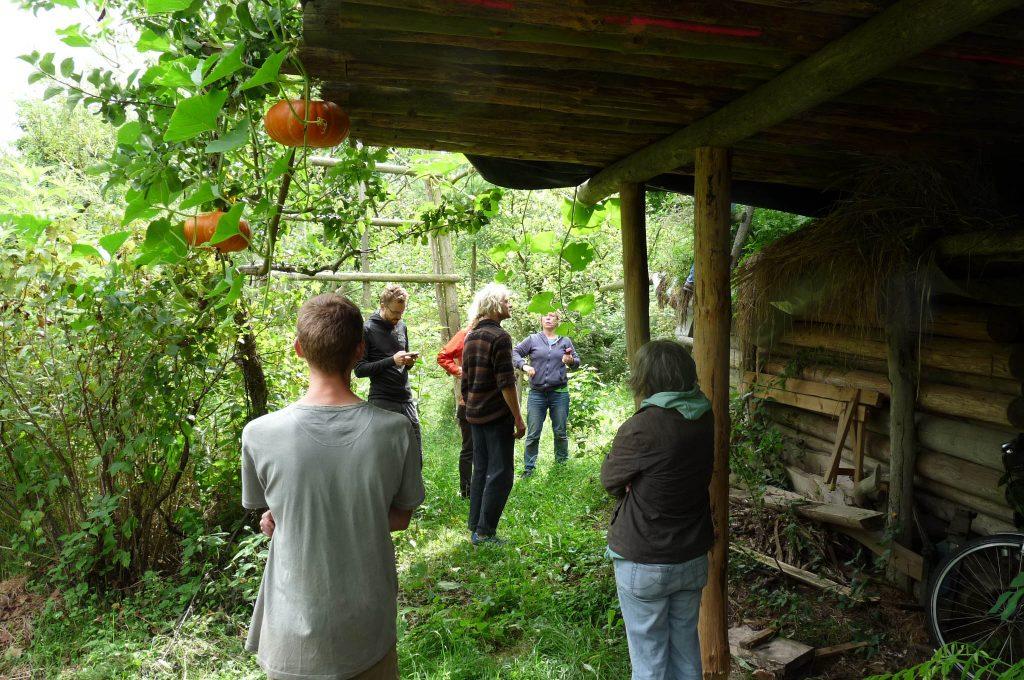 Waldgärten für Klimaschutz und Ernährungssouveränität