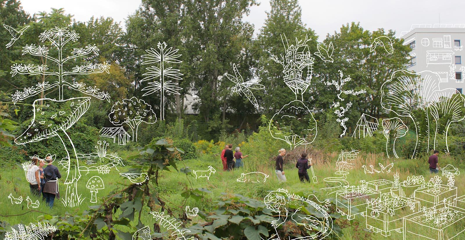 Peace of Land permakultureller Gemeinschaftsgarten in Berlin Prenzlauer Berg