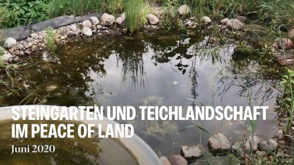Steingarten Teichlandschaft Juni 2020