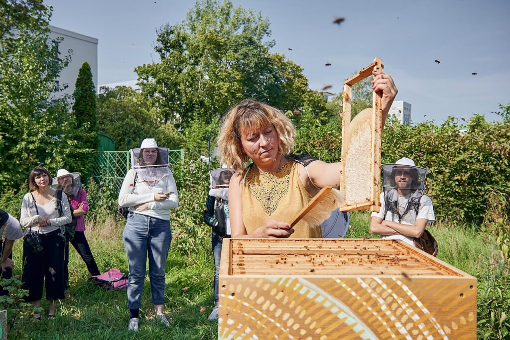 Weltbienentag – Das Summen der Bienen und Wildbienen